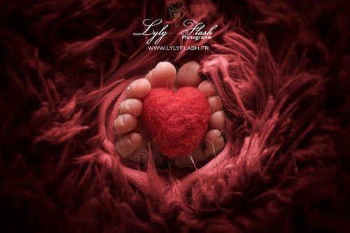 Photographe - Studio photo Lyly Flash - photo 10