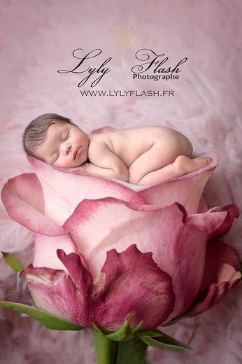 Photographe - Studio photo Lyly Flash - photo 1