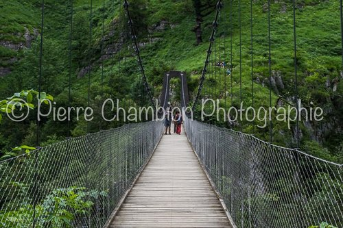 Photographe - Pierre CHAMBION Photographie - photo 13