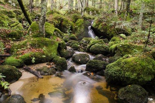 Photographe - www.RAYONDELUNE.com - photo 78