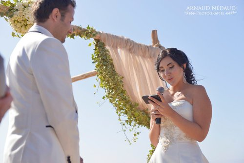 Photographe mariage - Arnaud Nédaud  - photo 37