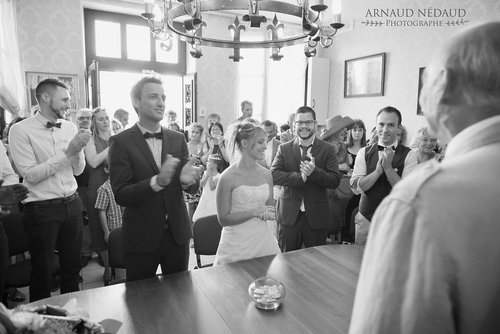 Photographe mariage - Arnaud Nédaud  - photo 152