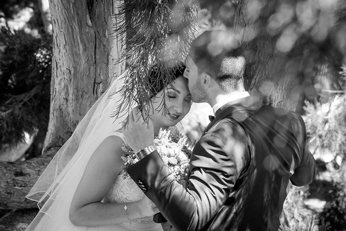 Photographe mariage - Studio EmvCréa  - photo 65