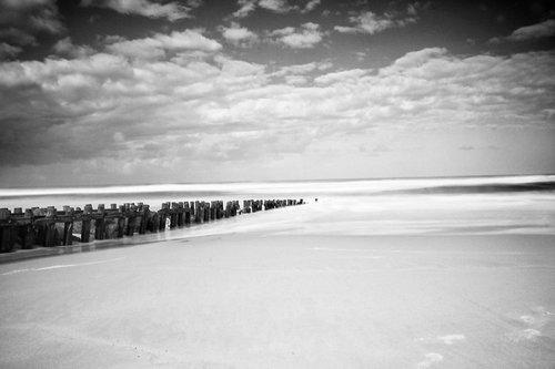 Photographe mariage - Agence Argo - photo 11