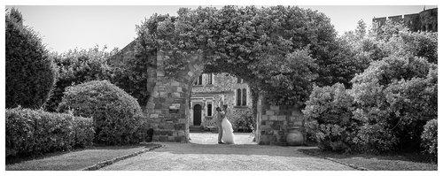 Photographe mariage - AC Photographies - photo 51